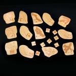 Dřevěné skládačky dřeviny - komplet 13 ks, bez povrchové úprava