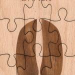Puzzle daněk